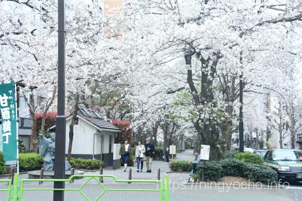 浜町緑道公園2020/03/27